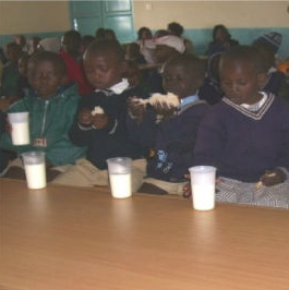 TGUP Project #5: Cows for Orphans in Kenya - 2008