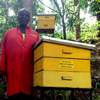 TGUP Project #121: Beehives 2019 in Kenya - 2019