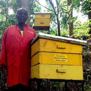 TGUP Project #172: Beehives in Kenya - 2020